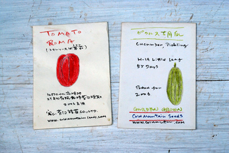 essay for a seed